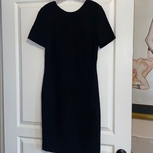 Zara dress with back cut outs NWT sz LARGE